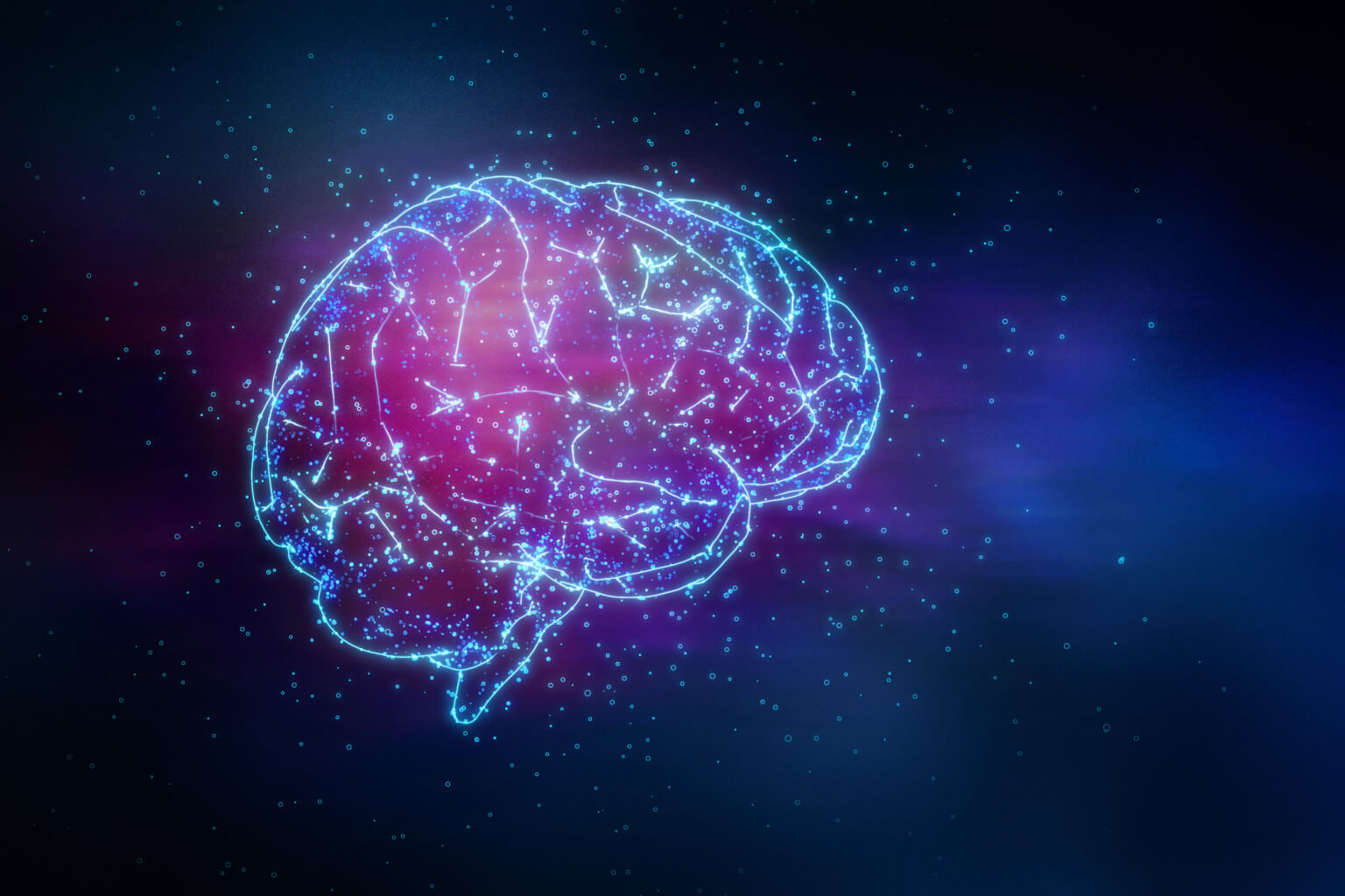 Biosistemica Neuro plasticity
